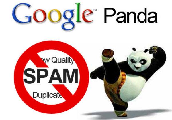 Update-urile Panda se vor face treptat